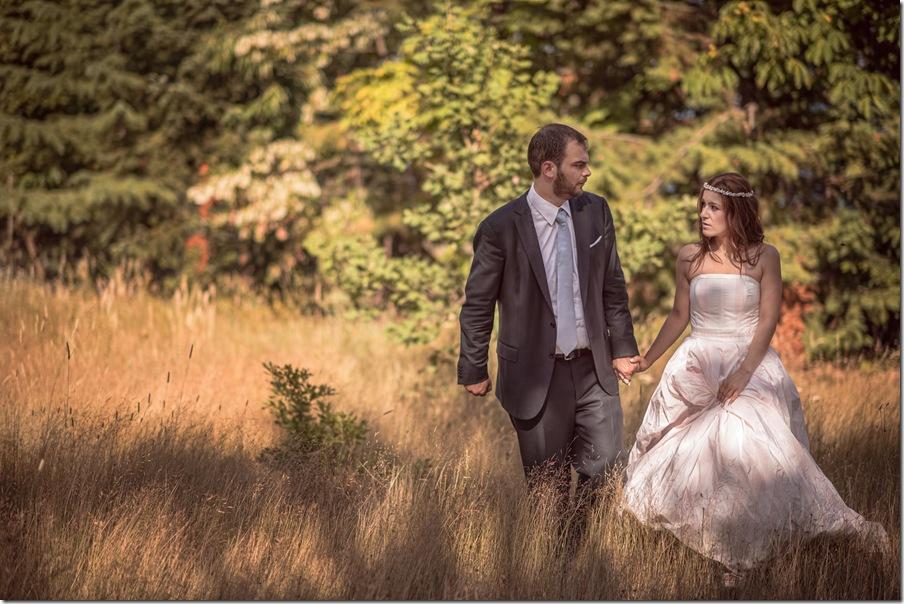 wedding in Kazarma lake resort-046